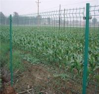 湖南护栏网